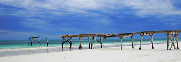 Get Wet Designs - Beach Themed Websites by TechTiger